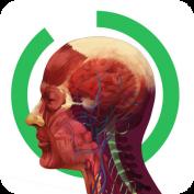 ARLOON Anatomy: 3D απεικόνιση του ανθρώπινου σώματος.